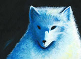 Winter's White Fox